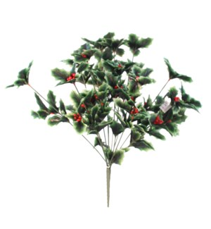 HOLLY BUSH X 14 W/RED BERRRIES