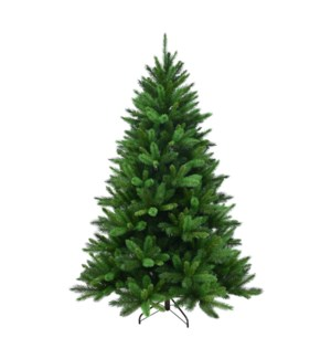 7.5' NEW CAROLINA SPRUCE TREE