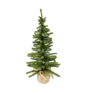 """6""""  MINI CANADIAN TREE W/"""