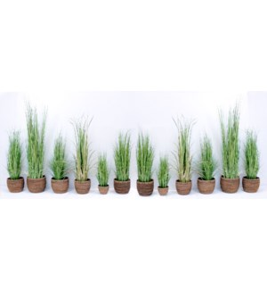 Mixed Grass Package w/Baskets