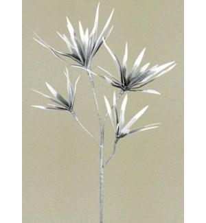 Botanical - Gray