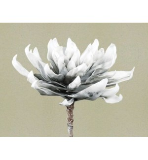 EVA Ex. Small Grey & White Leaves