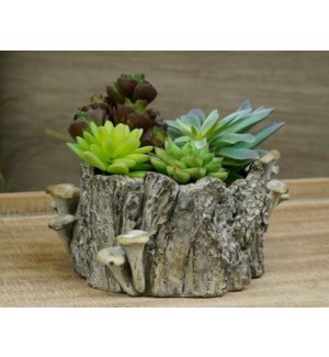 Log Planter Small