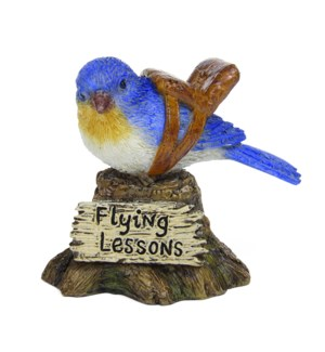 Flying Lesson