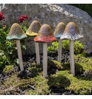 Grande Natural Mushroom Collection