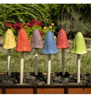 Tall Bright Mushroom Collection