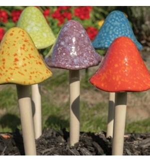 Grande Bright Mushroom Collection