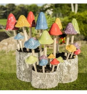 Mushroom Package Program, Brights