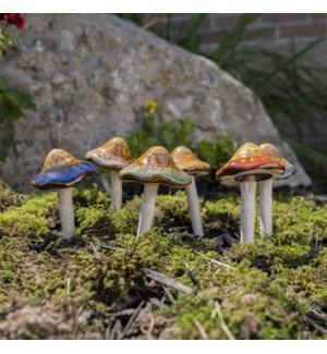 Small Natural Mushroom