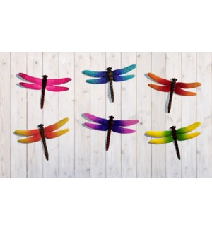 Small Dragonfly Wall