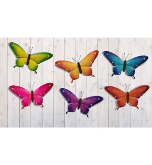 Med. Wall Butterfly