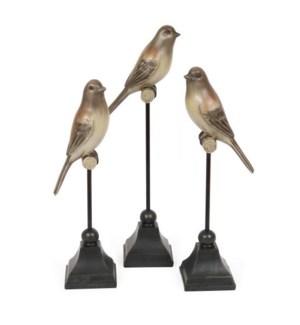 Song Bird Trio Set of 3