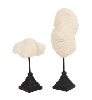 Coral Set of 2