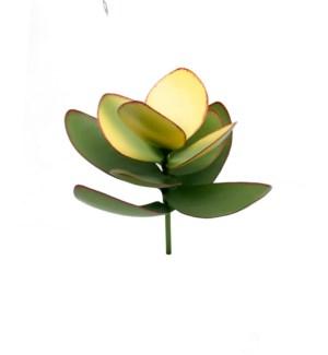 Metal Succulent