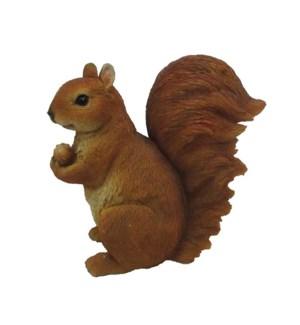 Squirrel sitting L