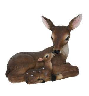 Deer with fawn lying