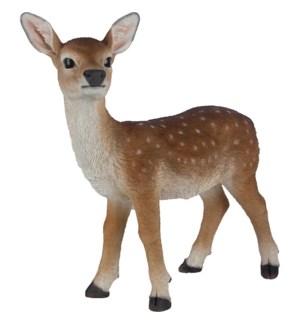 Sika deer standing S