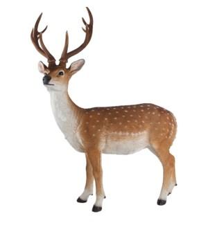 Sika deer standing L
