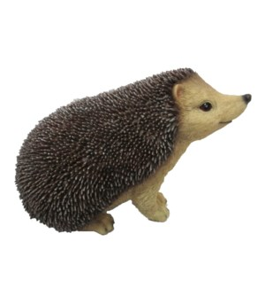Hedgehog L