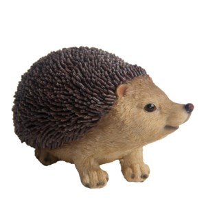 Hedgehog M