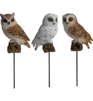 Owl on pole ass.