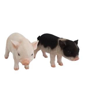 Piglet standing ass.