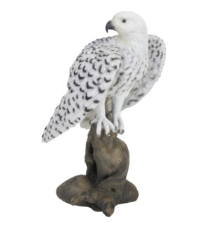 Gyrfalcon on trunk