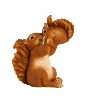 Squirrel with cub