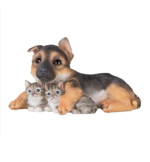 Pup with two kittens