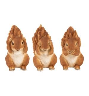 Squirrel see hear silence ass.