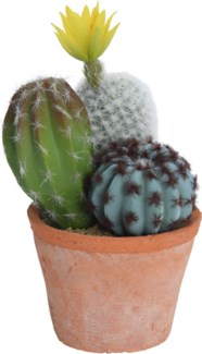 319000140 Cacti in Terracotta Pot, Round 3.9x6.2x7.9 in.