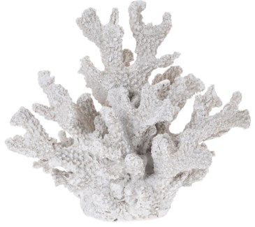 252120350-Coral Decor M, Polystone, 8x6x7 in