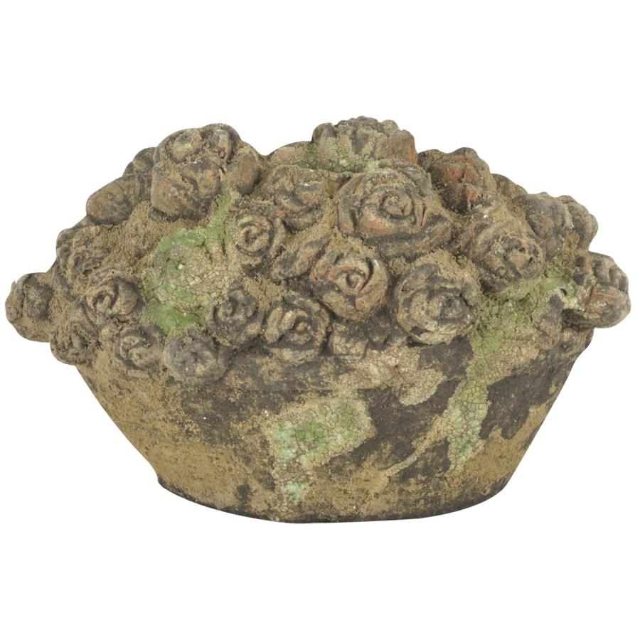 AC flower basket moss
