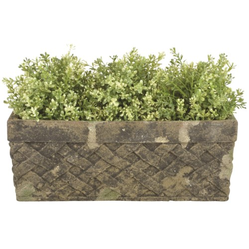 AC trough moss