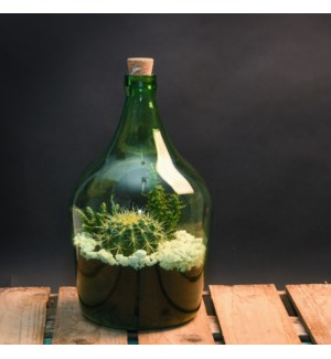 Open terrarium bottle 5 litre - (7.8x7.6x13 inch)