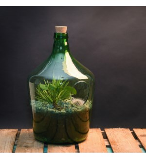 Open terrarium bottle 10 litre - (9.9x9.9x15.5 inch)