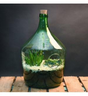 Open terrarium bottle 15 litre - (11.6x11.6x18 inch)
