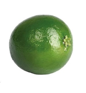 Lime Decor