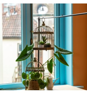 Aged metal green birdcage set of 2