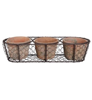 AT 3 pots in wire basket. Terr