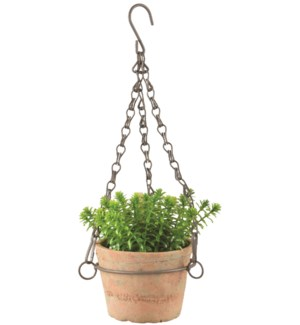 Aged Terracotta pot hanging S