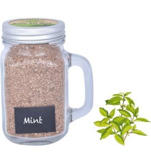 Grow set in garden mug mint. G