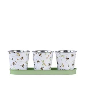 Bee print 3 pots on tray