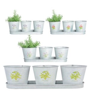 Botanicae pots on tray in old zinc. Zinc. 33,0x11,0x10,6cm. oq/12,mc/24 Pg.129
