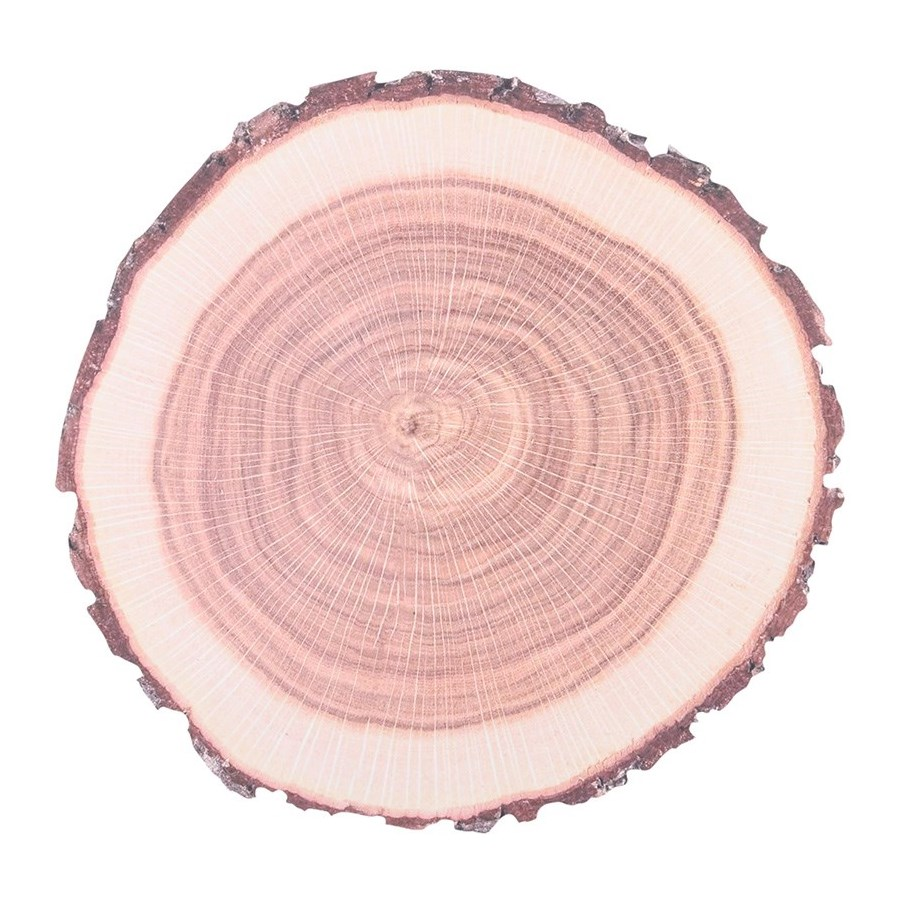 Placemats Paper Tree Trunk