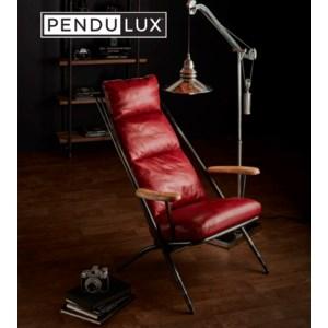 Pendulux 2020 Into