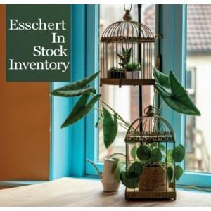 Esschert In Stock Inventory