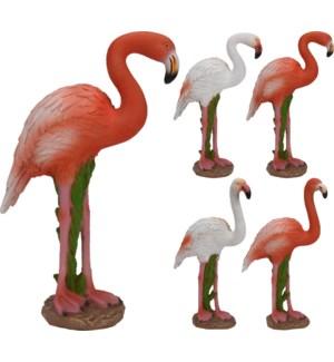 095500580. Flamingo 4Asstd LC