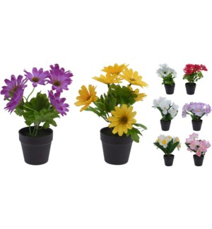 317002900-Artificial Potted Plants, Asst. 7x7x8.5 inch
