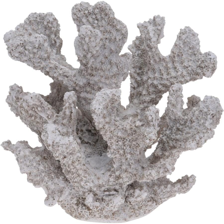 252120340-Decor Coral S